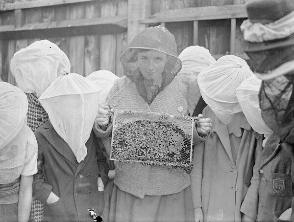 A beekeeping class is an innovation at Wood Lane, Shepherd's Bush, London open-air school. The pupils are protected by gauze face masks and handled the bees without fear. A pupil holding a brood frame of bees.  1 September 1937
