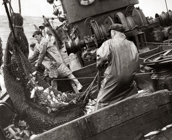 Fishermen on board a trawler in the North Sea