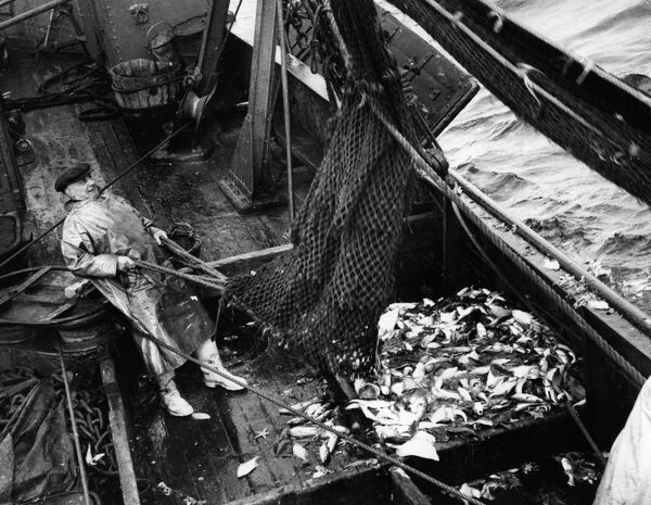 Fishermen on board a trawler in the North Sea Fish where the fish are!