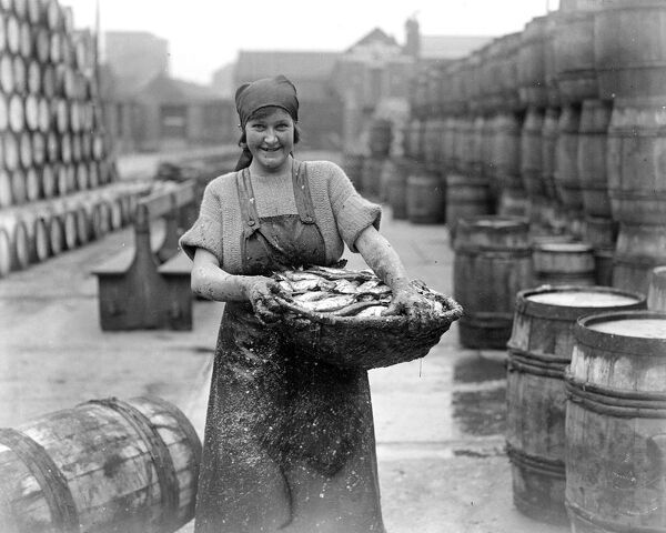 Herring Fishery at Great Yarmouth , Norfolk , England .   A fisher girl packing the herrings in salt barrels .   1923