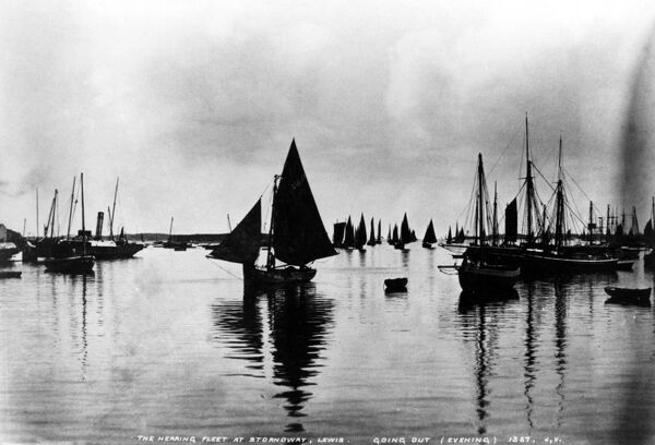 The herring fleet at Stornoway, Lewis, going out in the evening - 1367  ?TopFoto Fish where the fish are!