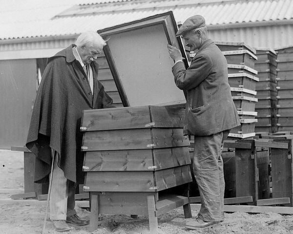 Lloyd George and bees in bee hives    May 11th 1934