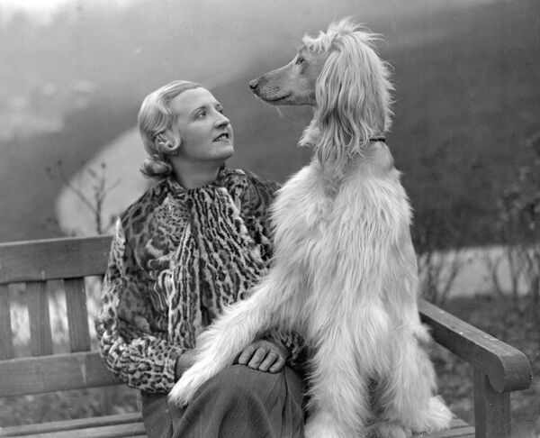 Tunbridge Wells Canine Society's Show. Mrs Edna Carlton with her prize winning Afghan Hounds.   1935