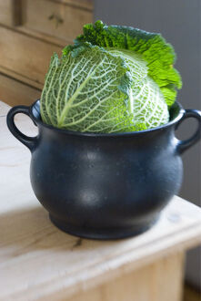 Cabbage sitting in iron cooking pot in kitchen credit: Marie-Louise Avery /
