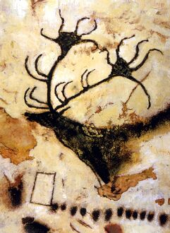 CAVE PAINTINGS Detail of cave paintings of a stag, from the Axial Gallery of Lascaux