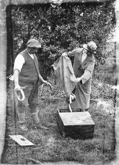 Eel fishing on the Hampshire river Avon 18 August 1920