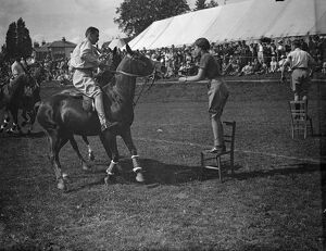 sussex life/fancy dress steeplechase haywards heath photo shows