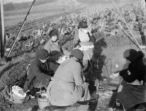 Farm workers sitting under a pylon, eating their lunch. 1936