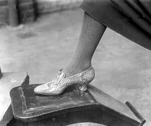 Fish and snake skins used for fashionable shoes at Gerrett and sons. 19 September 1925