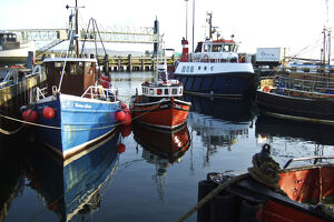 Fishing boats in harbour, Stromness, Orkney, UK credit: Marie-Louise Avery /