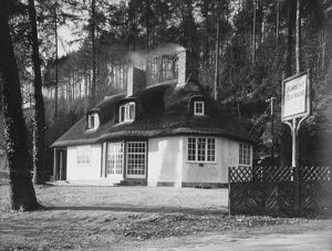 The Forest Tea Lodge in Longhope , Gloucester c.1920