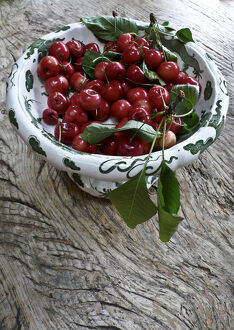Freshly picked cherries from a Kentish garden in decorative pedestal bowl on rustic