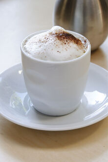 Frothy topped cappuccino in handleless cup with cocoa dusted on and cocoa shaker
