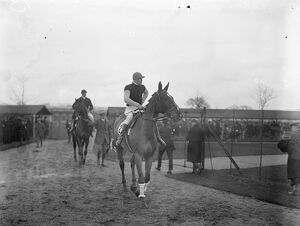 One of the Grand National Candidates, ' Old Tay Bridge ' ( Captain Bennett up )