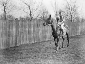 The Grand National at Liverpool. Mr Widener ' s ' Duettiste ', ( A Escott up )