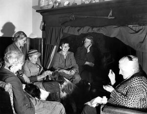A group of elderly people and their dogs gathered together in a house in Sussex, England