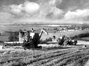 Harvest time on the South Downs. Combine harvesters at work on the Golden Barn