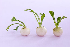 Three little baby turnips on pink surface credit: Marie-Louise Avery / thePictureKitchen