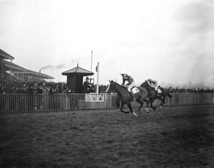 Lord Westmoreland rides his own horse to victory. At Hurst Park Lord Westmoreland