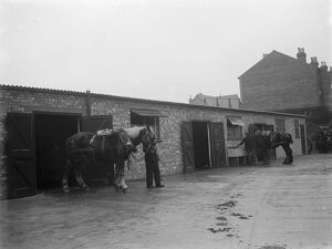 A man walks a horse out of the stables. 1936