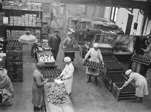Manufacture of cork balls at Chingford General view of the house 28 November 1922