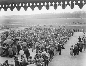 At the Newbury Races. A view showing the crowd and the finish of the first race