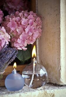 Two oil burner lamps with pink hydrangea and lavender in window niche credit: Marie-Louise