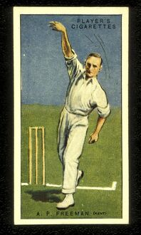 A P Freeman 'Tich' Freeman Kent and England Cricket 1930