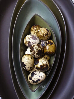 Quail's eggs in their shells in dark green bowls stacked credit: Marie-Louise Avery