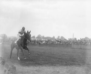 Sandown Park. ' Town Guard ' the winner of the race with Archibald up