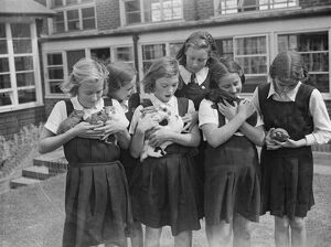 Schoolgirls with their pets at school. 1939