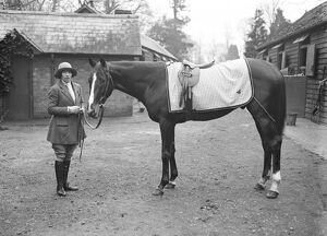 Society Lady as racehorse trainer. Miss Wilmot the right hand man of Sir Robert