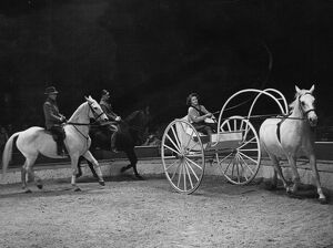 Trainer and horses rehearsing before a show at the Olympia Circus, London, England