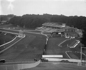 A view over Goodwood race course. 27 July 1929