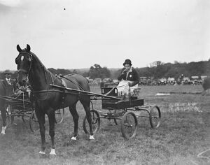 Westerham Hill Horse Show Mrs Raymond Phillips 1928 9 July 1926