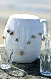 White jug with white fabric cover weighted with sea shells to keep insects out. credit